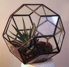 Geometric Glass Terrarium/Handmade Planter for by TheDeadPheasant