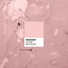 Pantone Color of 2016, Rose Quartz