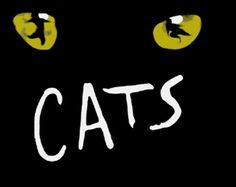 Google Image Result for http://www.thedramateacher.com/wp-content/uploads/2010/11/cats.jpg