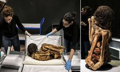 1,000-year-old Peruvian mummy set to be unveiled to the public