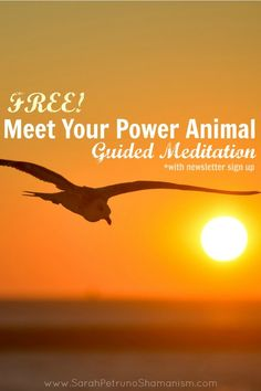 Sign up for the Sarah Petruno Shamanism newsletter and receive a free guided meditation to meet your power animal guide.