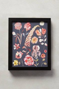 Botanical Specimen Wall Art