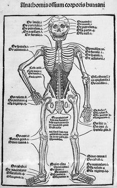 Anathomia ossium corporis humani, by Jean Grüninger, 1497