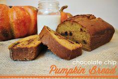 Classy Clutter: Chocolate Chip Pumpkin Bread for Beginners