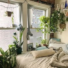 Tfw your bedroom is kind of a greenhouse.  @danidevellis #UOHome