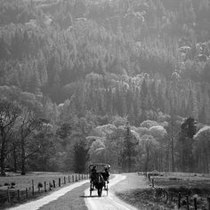 Killarney National Park, Ireland 2015. #insightmoment