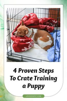 How to Crate Train a Puppy: It is important that you start crate training them early and keeping a close eye on them, particularly if they are still learning what is expected of them. #CrateTrainingPuppy #AtNight #Schedule #Puppy Stop Puppy From Biting, Puppy Biting, Puppy Training Tips, Crate Training, Dog Hand Signals, Puppy Find, Best Puppies, Dog Boarding, Dog Crate