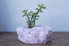 Rose Quartz Raw Crystal Succulent Planter  with Succulent - Healing Crystals and Stones - Crystal Decor on Etsy, $24.00