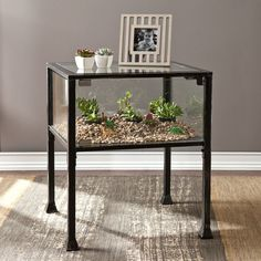 Create a unique, thriving display with this lively end table. Black frame with silver distressing and glass panels creates a universal look that complements many styles and décor. This terrarium style