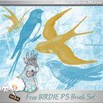 Ilmainen Linnut Photoshop Brush Set