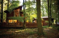 Enjoy a luxury break in the UK with Forest Holidays