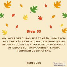 Com isso você economiza água e ainda diminui a quantidade de agrotóxicos e de microrganismos nos alimentos. #eusoubg #baiadeguanabara #labhidroufrj #ufrj #riodejaneiro #errejota #agua #analisedeagua