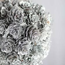 Image result for silver pinecone