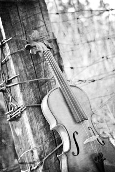 Violin music is a piece of art that goes in the ears straight to the heart