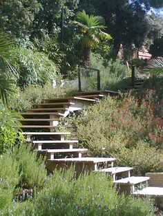 Passion Bois vous présente sa gamme #Escalier #Extérieur :  Escalier en teck. Idée #décoration : idéal pour un style d'extérieur épuré, autour d'une piscine. Plus d'idées sur : www.escaliers-passionbois.com.