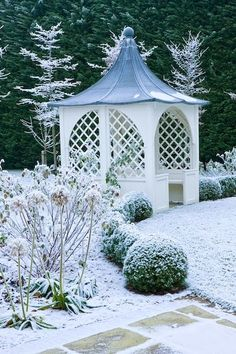 Pavilion and Box Ball Hedges Give The Garden Winter