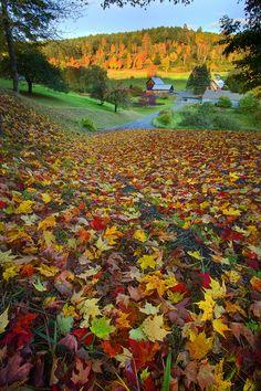 Sleepy Hollow Farm (aka Gray Farm) is near South Pomfret - Woodstock, Vermont. https://www.flickr.com/photos/nkeppol/5075656883/