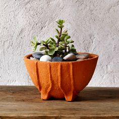 Succulent terracotta planter zen pot by GlinkaDesign on Etsy