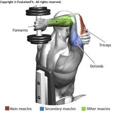 TRICEPS - SEATED DUMBBELL ONE ARM TRICEPS EXTENSION