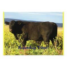 Roundup Time!  Cattle Drive - Western Style Party Personalized Announcements