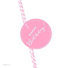 AP58551_andaz_press_gift_tags_circle_happy_birthday_playful_Pink_photo