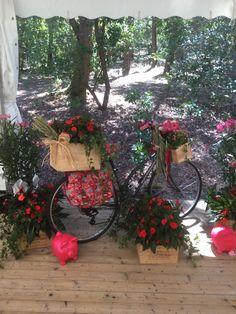 Un mariage au bord d'un lac - fleuriste-bordeaux Bordeaux, Plants, Golden Anniversary, Bordeaux Wine, Plant, Planets