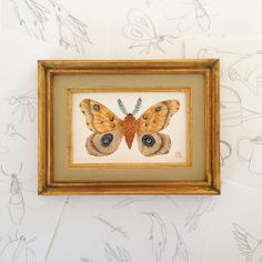 Silk Moth, Watercolor by Golly Bard, one of six paintings for the Enormous Tiny Art Show: http://www.enormoustinyart.com/Artists/a-c/Bimba,-Holly-Ward.aspx
