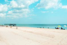~~~ Great Beaches in Florida ~~~