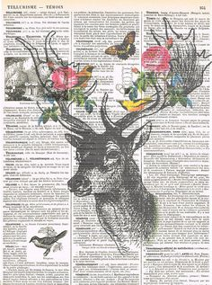Deer,roses.Collage.Fantasy. Antique Book Pages Print, handmade gift.home decor,vintage,retro.french.art.birthday.nursery.butterfly.bird.art