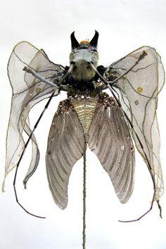 Emmanuelle Dupont Joseph Cornell, Louise Nevelson, Textile Sculpture, Art Textile, Textiles, Poster Xxl, Insect Art, Woodland Fairy, Process Art