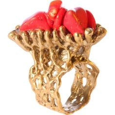 Silvana K Designs Coral Life Ring With Natural Red Corals by Shoes Fashion