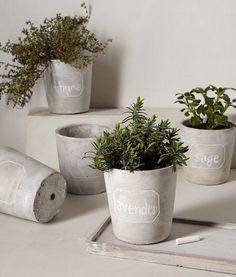 cement chalkboard herb planters