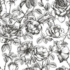 Illustration about Floral seamless pattern with hand drawn roses. Illustration of fabric, floral, garden - 162378186 Floral Pattern Wallpaper, Flower Wallpaper, Wallpaper Roll, Wallpaper Patterns, Screen Wallpaper, Vintage Flowers, Vintage Floral, Vintage Black, Vintage Ideas