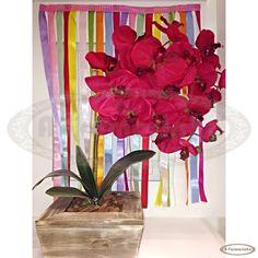 Orquídeas vermelhas lindas com cachepô incrível de madeira para decorar aparadores e mesas de canto em salas de jantar