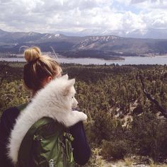 Adventure wild experience outdoors explore wanderlust wilderness dog companion travel world nature camping trekking Into The Wild, Adventure Is Out There, Belle Photo, The Great Outdoors, Adventure Travel, Nature Adventure, Adventure Awaits, Road Trip, Cute Animals