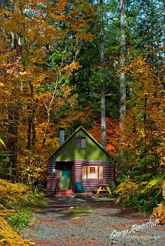 A very cute cabin - the colours maketh this house.