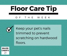 Floor care #tip: keep your pet's nails trimmed.