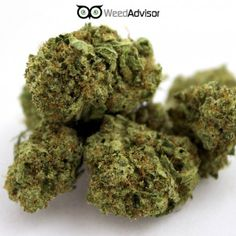 #PurpleNepal is a happy, medium-level #indica, that will not leave you stuck on the couch but is best used when you are looking to unwind at the end of the day.