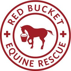 Red Bucket Equine Rescue | To save, rehabilitate, train and find loving homes for abused, neglected, abandoned horses.