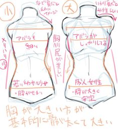 Illustration course for drawing a chest! How to draw a breast with the ribs and … Illustration course for drawing a chest! How to draw a breast with the ribs and hips in your eye? Drawing Body Poses, Body Reference Drawing, Drawing Reference Poses, Anatomy Reference, Drawing Tips, Drawing Female Body, Hair Reference, Drawing Techniques, Body Drawing Tutorial