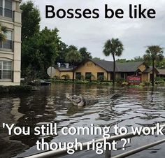 Living in FL during a hurricane.