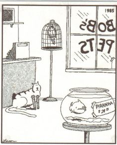 The humor of Gary Larson in Far Side... Miss it so much.