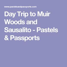 Day Trip to Muir Woods and Sausalito - Pastels & Passports
