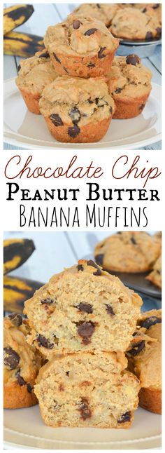These delicious Chocolate Chip Peanut Butter Banana Muffins are perfectly moist thanks to the banana, and packed full of a favorite flavor combination. Perfect with your morning coffee, or even for dessert! (breakfast ideas for kids banana bread) Healthy Banana Recipes, Banana Bread Recipes, Coffee Recipes, Delicious Chocolate, Delicious Desserts, Yummy Food, Sweet Desserts, Chocolate Desserts, Brunch Recipes