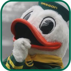 Oregon duck gangnam style go ducks