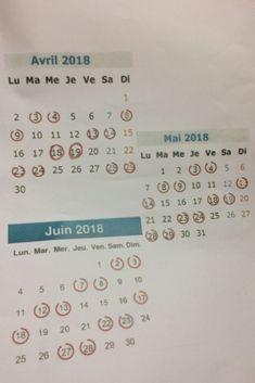 SNCF : découvrez le calendrier prévisionnel de la grève :https://bookingmarkets.net/fr/sncf-decouvrez-le-calendrier-previsionnel-de-la-greve/