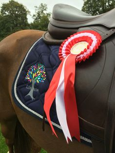 A happy rider wins the final - rides in Equipe, Neue Schule and uses Pure Apple. Win!