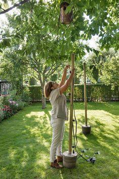 garden care backyards Wow, so knnen Garten - Balcony Plants, Balcony Garden, Garden Care, Container Plants, Container Gardening, Allotment Gardening, Hydrangea Garden, Pot Plante, Plantar