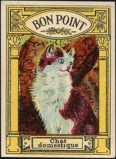 Bon Point - Chat Domestique   -----------------------------------------------------   Bon Points are cards that used to be given to French schoolchildren as rewards.