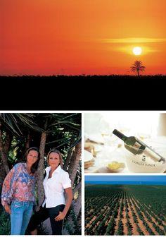 Works | Tamaco | Agenzia di Comunicazione Integrata